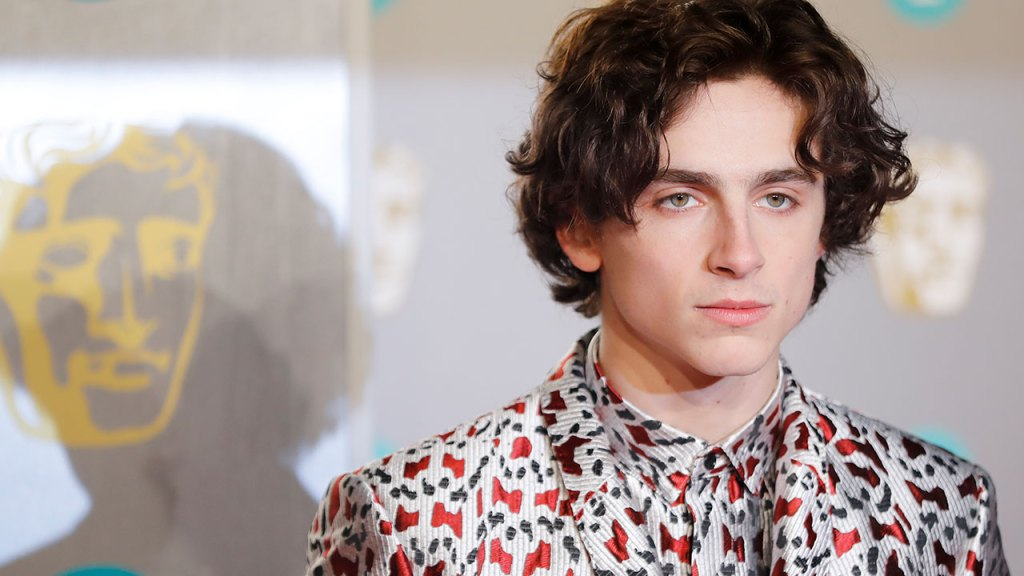 Timothée Chalamet gets his style-mojo back at the 2019 BAFTA's