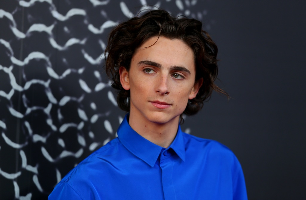 If Timothée Chalamet possessed the same power as in 'The King', this is how he'd change America
