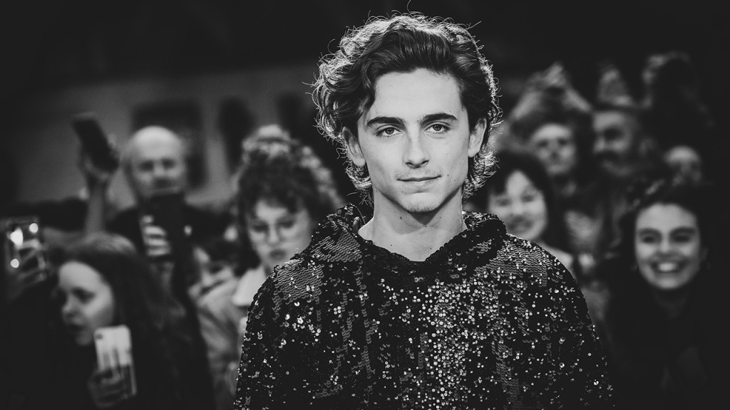 Timothée Chalamet is truly the only man who can pull off a sequin hoodie