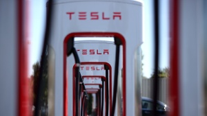 Tesla Elon Musk Cars