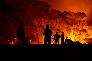 Australian bushfires - 202-