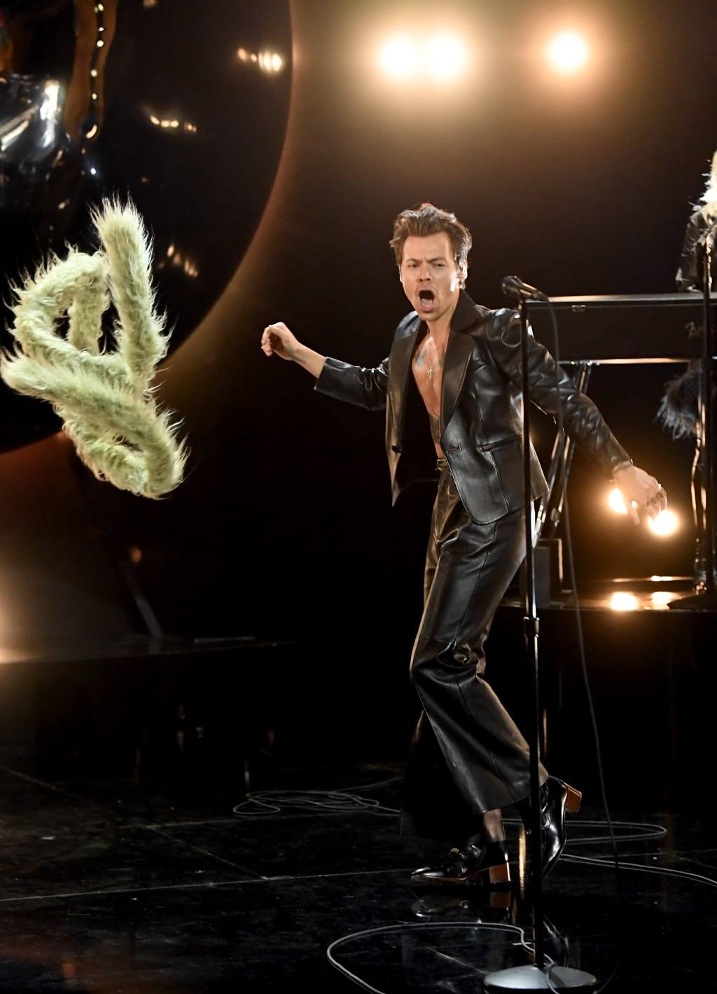 Harry Styles Feather Boa